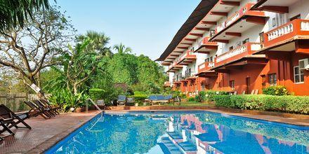 Allasalue, Chalston Beach Resort, Pohjois-Goa, Intia.
