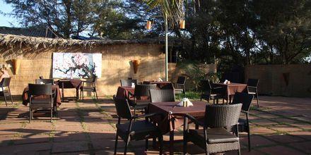 Hotellin ravintola, Chalston Beach Resort, Pohjois-Goa, Intia.