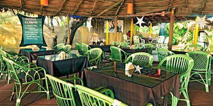 Rantaravintola, Chalston Beach Resort, Pohjois-Goa, Intia.