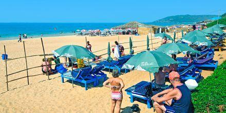 Ranta hotellin edustalla, Chalston Beach Resort, Pohjois-Goa, Intia.