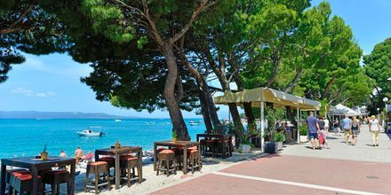Hotelli City Beach, Makarska