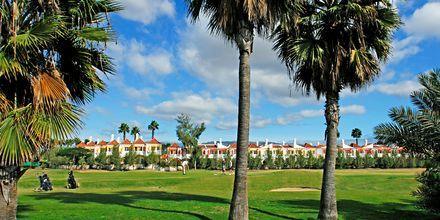 Golfkenttä, Hotelli Cordial Green Golf, Maspalomas, Gran Canaria.