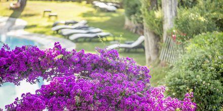 Hotelli Corfu Holiday Palace Kanoni, Korfu.