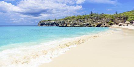Rento rantaelämä yhdistettynä kaupungin sykkeeseen – tervetulia Curaçaoon!