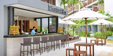 Allasbaari Sunbird, Deevana Plaza, Ao Nang, Thaimaa.