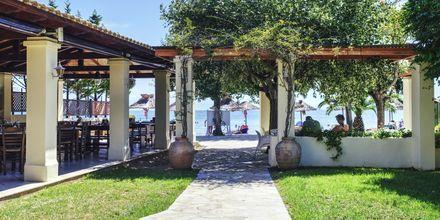 Taverna. Hotelli Delfinia, Moraitika, Korfu, Kreikka.