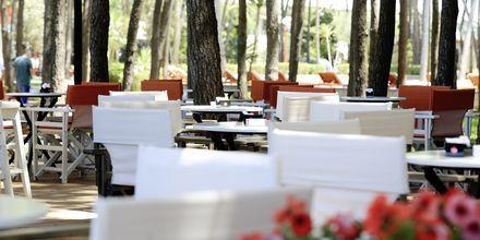 Ravintola. Hotelli Diamma Resort, Durres Riviera, Albania.