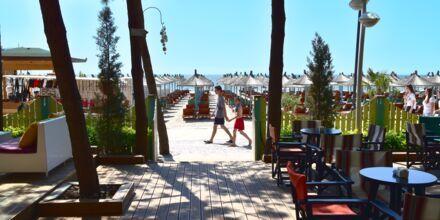 Läheinen ranta. Hotelli Diamma Resort, Durres Riviera, Albania.