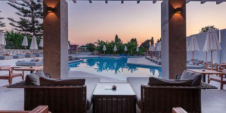 Allasalue. Hotelli Diamond Boutique, Lambi, Kos, Kreikka.