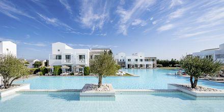 Allasalue, Hotelli Diamond Deluxe Hotel, Lambi, Kos.