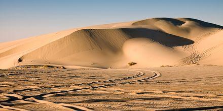 Aavikko Dohassa – täydellinen aavikkosaarille!