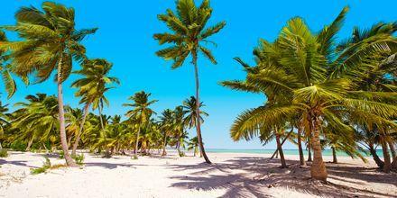 Dominikaaninen tasavalta - Ranta