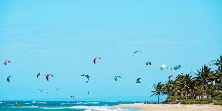 Dominikaaninen tasavalta - Cabareet