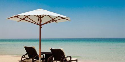 Ranta, hotelli Hilton Dubai Jumeirah Resort, Dubai, Arabiemiraatit.