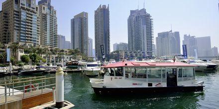 Dubai Marina Dubai Jumeirah Beachilla, Arabiemiraatit.