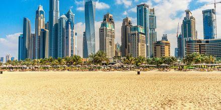 Dubai Jumeirah Beach/Dubai Marina