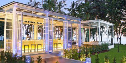 Malati baari, Dusit Thani  Krabi Beach Resort, Klong Muang, Krabi.