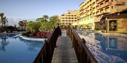 Allasalue, Hotelli Elba Sara, Fuerteventura.