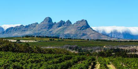 Etelä-Afrikka - Kapkaupunki
