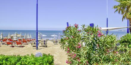 Läheinen ranta. Hotelli Fafa Apartments, Durresin Riviera, Albania.