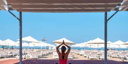 Osallistu maksuttomaan joogaan. Hotelli Fafa Grand Blue Resort, Durresin Riviera, Albania.