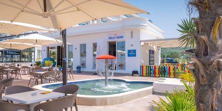 Lastenallas. Hotelli Fafa Grand Blue Resort, Durresin Riviera, Albania.
