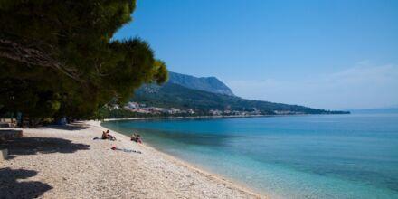 Läheinen ranta, Hotelli Flora, Tucepi, Kroatia.