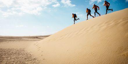 Juoksulenkki hiekkadyyneillä Fuerteventuralla.