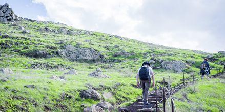 Madeiralla on lukematon määrä vaellusmahdollisuuksia.