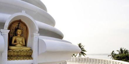 Japanilainen Peace Pagoda Rumalassa Gallen eteläpuolella, Sri Lankassa.