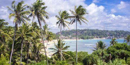 Unawatuna Beach Gallen ulkopuolella Sri Lankassa