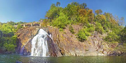 Dudshangar Falls, Goa, Intia