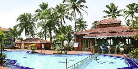 Allasalue, Goan Heritage, Pohjoi-Goa, Intia.