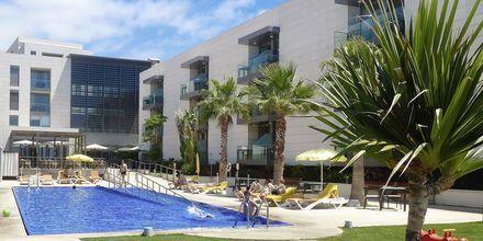 Allasalue. Hotelli Golden Residence, Madeira.