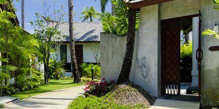 Yhden huoneen villa, Graceland Khao Lak Resort, Thaimaa