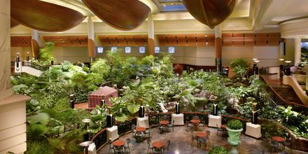 Ravintola Panini hotellilla Grand Hyatt, Bur Dubai, Dubai.