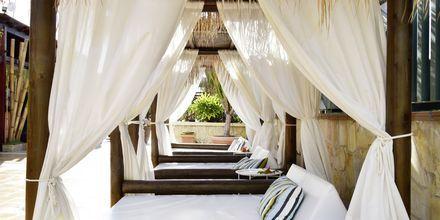 Nauti aurinkovuoteissa. Hotelli Green Garden Resort, Playa de las Americas, Teneriffa.