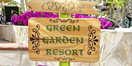 Puutarha. Hotelli Green Garden Resort, Playa de las Americas, Teneriffa.
