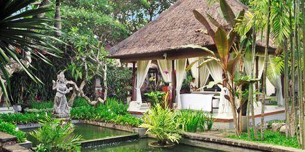Spa, Griya Santrian. Sanur, Bali.