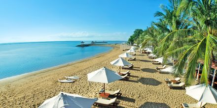 Ranta hotellin edustalla, Griya Santrian. Sanur, Bali.