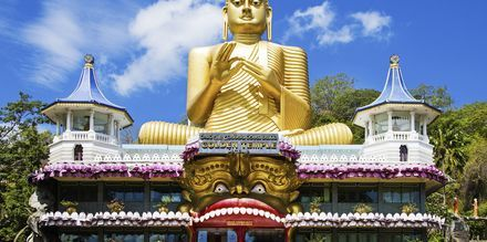 Kultainen buddha-patsas, Dambulla. Sri Lanka.