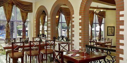 ravintola Al Basha, Habtoor Grand Resort, Autograph Collection, Dubai Jumeirah Beach, Yhdistyneet Arabiemiraatit.