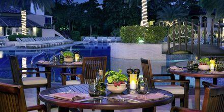 Ravintola Luciano, Habtoor Grand Resort, Autograph Collection, Dubai Jumeirah Beach, Yhdistyneet Arabiemiraatit.