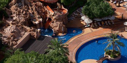 Habtoor Grand Resort, Autograph Collection, Dubai Jumeirah Beach, Yhdistyneet Arabiemiraatit.