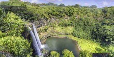 Havaiji