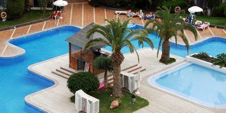 Allasalue, Hotelli HG Tenerife Sur, Los Cristianos, Teneriffa