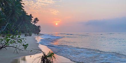 Auringonlasku. Hikkaduwa, Sri Lanka.