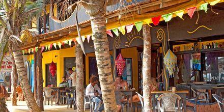 Ravintola. Hikkaduwa, Sri Lanka.