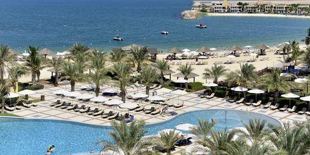 Allasalue, hotelli Hilton Ras Al Khaimah Resort & Spa, Ras al Khaimah.