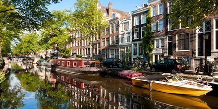 Hollanti Valuutta